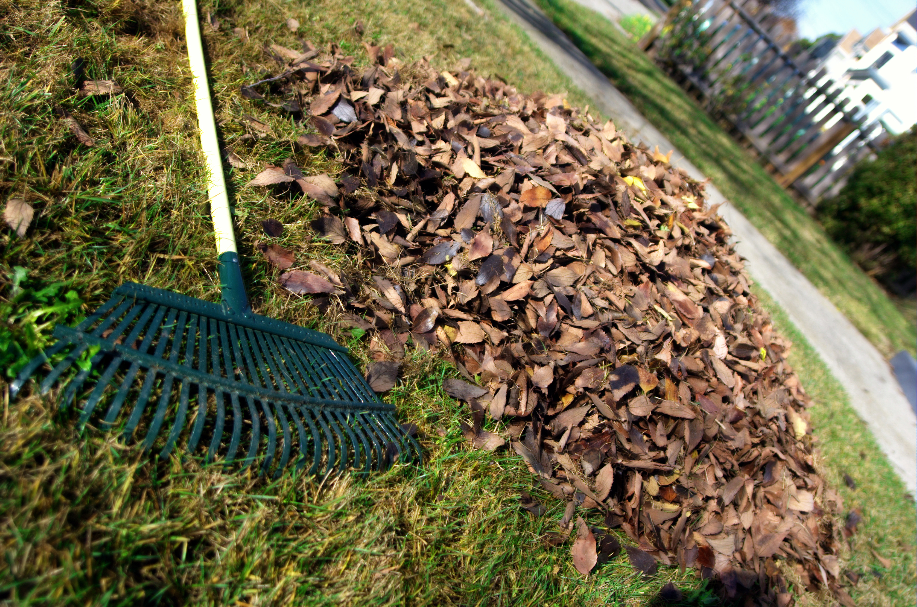 Don't Fall into a Bad Mood Over Yard Waste This Time of Year